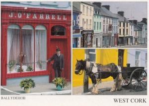 Ballydebhob Cork Ireland Patrick Macnee Lookalike Irish Postcard