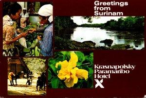 Surinam Paramaribo Greetings Courtesy Of Krasnapolsky Paramaribo Hotel
