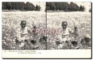 Stereoscopic map - USA - North America - Scene Enfantine - The Middle daisies...