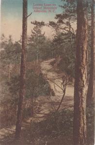 ASHEVILLE, North Carolina, PU-1910; Lovers Lane on Sunset Mountain
