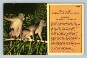 Miami FL-Florida,Monkey Jungle, Evolution Monkey Viewpoint, Linen c1970 Postcard