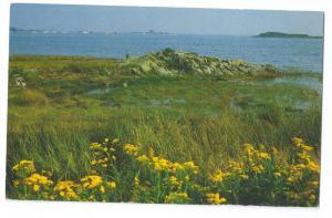 Cape Porpoise Maine ME 1989