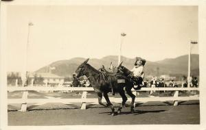 1924-1949 Real Photo Postcard Rodeo Cowboy Trick Riding Mule Unknown US Location