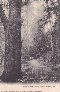 Pennsylvania Milford Walk In The Lower Glen 1910
