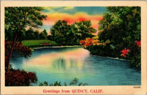 Scenic Greetings from Quincy CA Vintage Linen Postcard A25