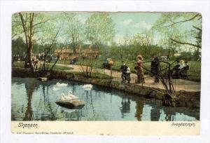 Svandammen, Skansen, Sweden, 1900-1910s