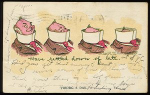 Have Settled Down of Late. Viborg, SD. 1906 undivided back comic postcard