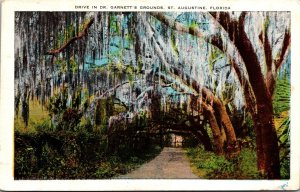 Florida St Augustine Drive In Dr Garnett's Grounds