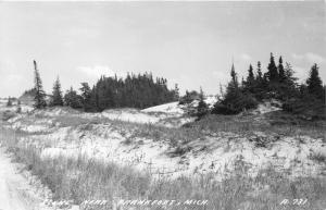 Frankfort Michigan~Trees & Sand Dunes near Town~1940s RPPC-Postcard