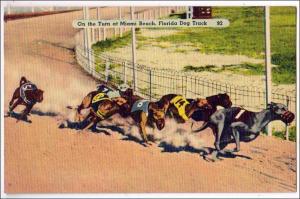 Florida Dog Track, Miami Beach