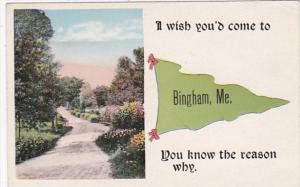 Maine I Wish You'd Come To Bingham Pennant Series