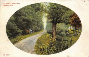 Wausau Wisconsin~Horse Buggy Pulled Off Lane~Country Drive Vignette~1910 PC