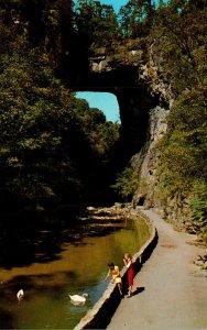 Virginia Natural Bridge
