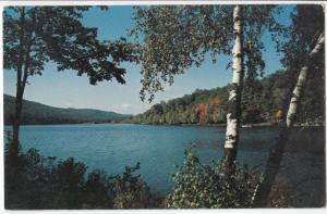 Kittatinny Lake, unused Postcard