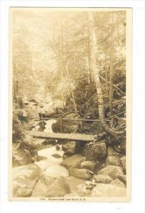RP, Elysian Land, Lost River, White Mountains, New Hampshire, 1918s