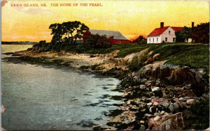 ORR'S ISLAND ME., HOME OF PEARL - ORR'S COVE,   Vintage  Postcard 1909