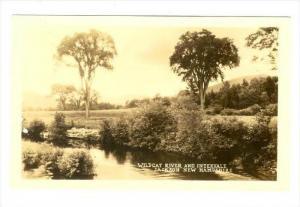 RP  Wildcat River & Intervale, JACKSON , New Hampshire , 20-40s