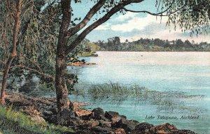 Lake Takapuna, Auckland, New Zealand, Early Postcard, Unused