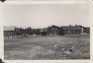 RP: Logging Camp #8 , Minn. , 1900-10s ; View-2
