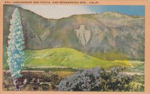 California San Bernardino Mountain Arrowhead And Yucca