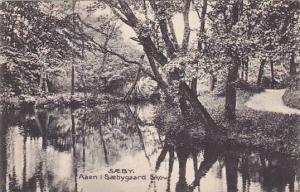 SAEBY. Aaen i Saebygaard Skov. , Denmark , 1910s