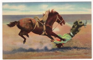 Spills and Thrills With A Bucking Broncho