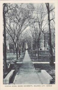 Kansas Baldwin Campus Scene Baker University Albertype
