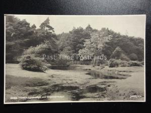 Hampshire: Tween LYNDHURST & BROCKENHURST c1916 Postcard by Judges 4668