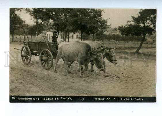 173304 BULGARIA SOFIA native carriage Vintage photo postcard