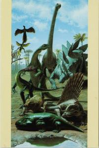 Dinosaurs National Museum of Natural History Unused Postcard F6