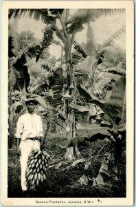 Postally Used JAMAICA B.W.I. Postcard Banana Plantation w/ Cancel & Stamp