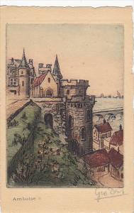 France Amboise Vue Generale