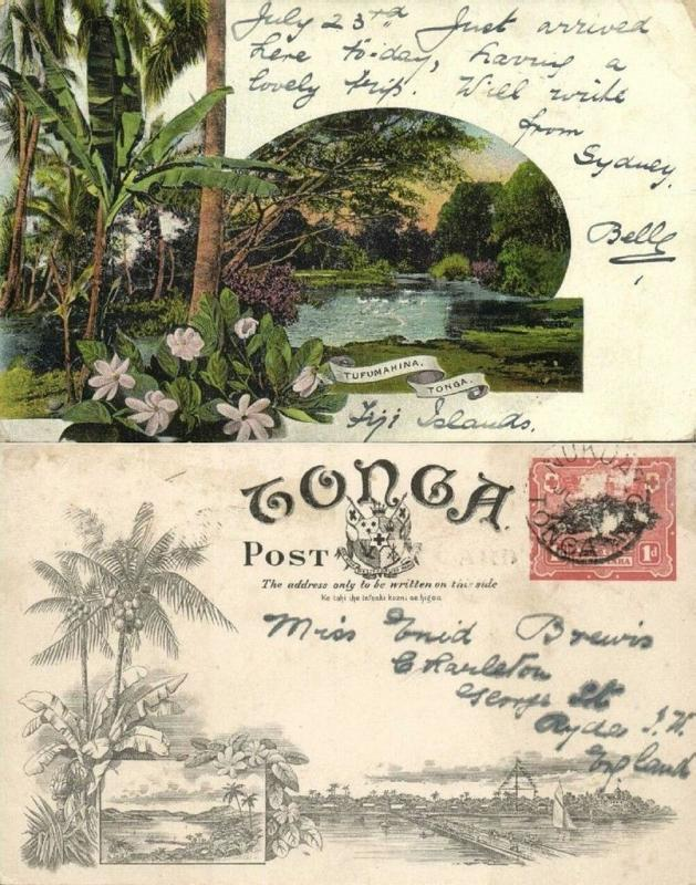 tonga islands, TAFUMAHINA, Partial View (1899) Pre-Printed Stamp