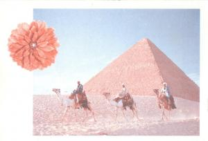 Egypt, Pyramids at Giza 1970s-1980s used Postcard