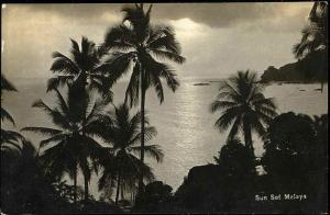 malay malaysia, Sunset with Palm Trees (1920s) RPPC