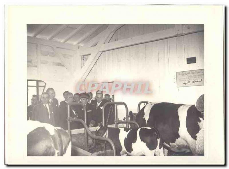 PHOTO Official trip of Mr the President of the Republic June 13, 1948 in Bord...