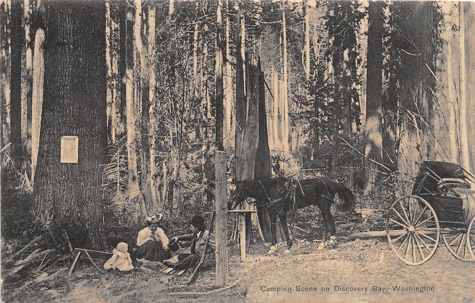 C19 Discovery Bay Washington Wa Postcard C1910 Camping Scene Family Horse Hippostcard