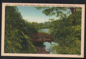 North Carolina colour Rustic Bridge on Terry Estate, Black Mountain, N.C unused
