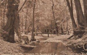 MT TAMALPAIS , California, 1900-10s ; Lagoon Creek , Muir Woods