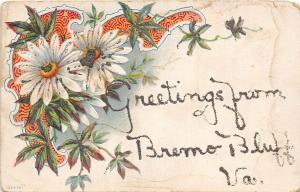 E48/ Bremo Bluff Virginia Va Postcard  c1910 Greetings from Bremo Bluff