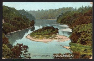 New York ROCHESTER Gorge of the Genesee River showing Island - pm1909 DB