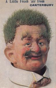 Funny Face Man in Canterbury Kent Grass Growing On Face Antique Comic Postcard