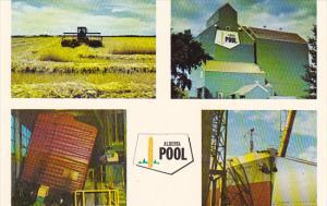 Canada Alberta Wheat Pool Program Multi View