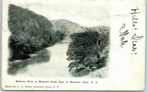 Vintage OKLAHOMA TERRITORY Postcard Medicine Bluff, East of Mountain Park O.T.
