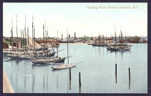 Sealing Fleet Ships Victoria Harbour BC unused c1910's