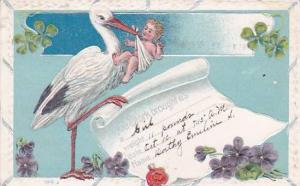 Congratulations Stork With Baby In Diaper & Birth Announcement 1911