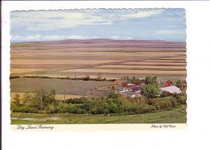 Dry Land Farming, Alberta, Photo Clif Cates