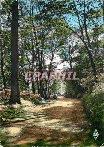 Modern Postcard Epinal (Vosges) Sous Bois in Old Castle