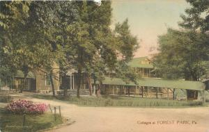 FOREST PARK, Pennsylvania  PA   Handcolored  COTTAGES  Albertype  Postcard