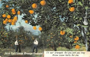 Los Angeles~I'll Eat Oranges For You, You Throw Snowballs For Me in Eldorado IL